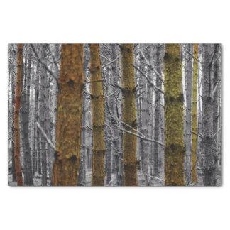 Rustic Pines Tissue Paper