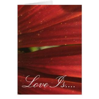 Rustic Red Wedding Card