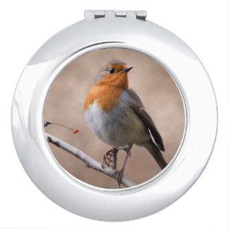 Rustic Robin Compact Mirror