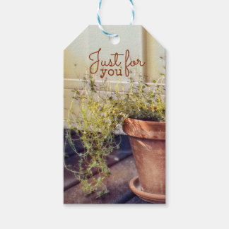 Rustic Thyme Gift Tags Pack Of Gift Tags