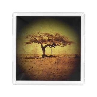 Rustic Tree Acrylic Tray