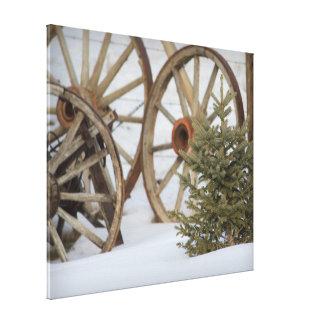 Rustic Wagon Wheels Pine Tree in Snow Canvas Print
