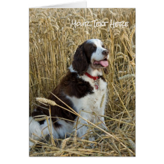Rustic Wheat Field and Sitting Dog Card