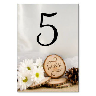 Rustic White Daisies Woodland Wedding Table Number