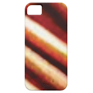 rusty copper tubes iPhone 5 case