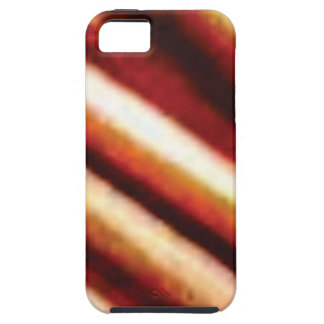rusty copper tubes iPhone 5 cover