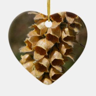 Rusty Foxglove (Digitalis ferruginea) Ceramic Heart Ornament