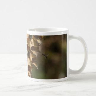 Rusty Foxglove (Digitalis ferruginea) Coffee Mug