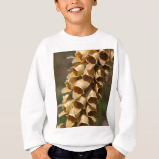 Rusty Foxglove (Digitalis ferruginea) Sweatshirt