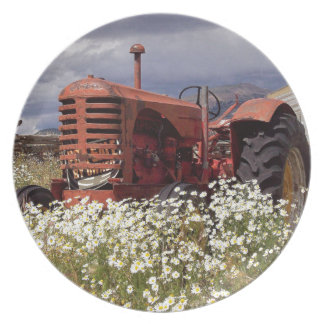 RuSTY OLD ViNTAGE TRaCTOR Dinner Plate