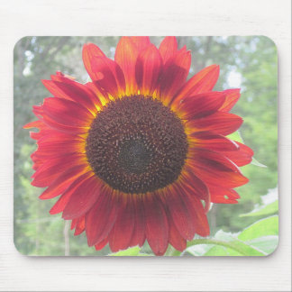 Rusty Red Sunflower Mouse Pad