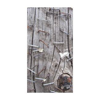 Rusty Staples & Weathered Timber Canvas Print