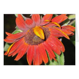 Rusty Sunflower Card