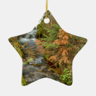 Rusty The Pine Tree and The Flowing Stream Ceramic Star Ornament