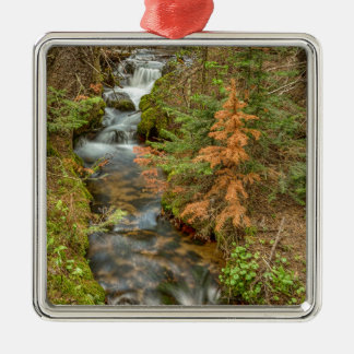 Rusty The Pine Tree and The Flowing Stream Silver-Colored Square Ornament