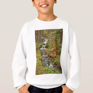 Rusty The Pine Tree and The Flowing Stream Sweatshirt