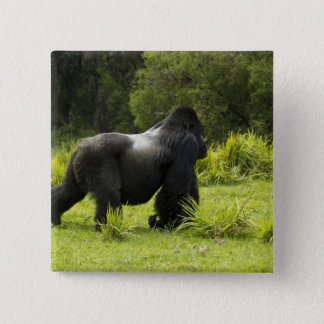 Rwanda, Volcanoes National Park. Mountain 2 2 Inch Square Button