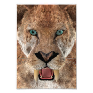 Saber Toothed Ttiger or Smilodon Photo Print