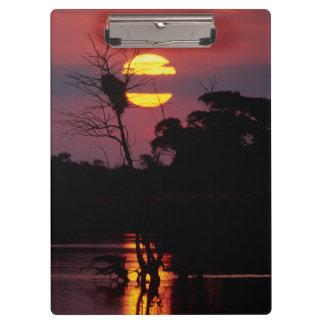 Sabi River At Sunset, Kruger National Park Clipboard