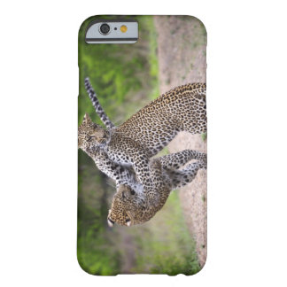 Sabi Sands Conservancy, Mpumalanga Province, Barely There iPhone 6 Case