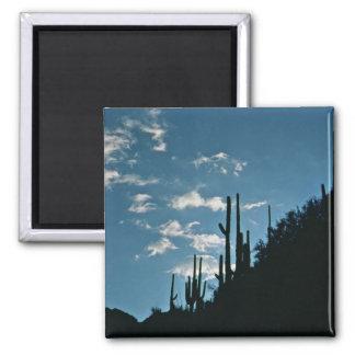 Sabino Canyon, Arizona Square Magnet