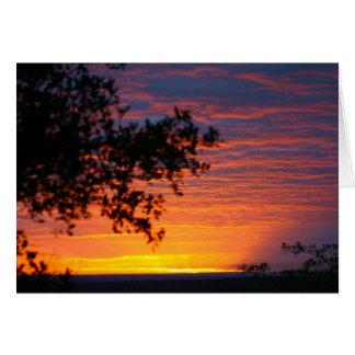 Sable Sunset Card