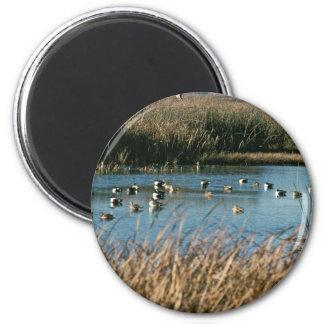 Sacramento National Wildlife Refuge Magnet