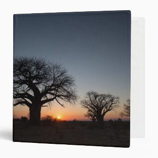 Sacred Baobabs 3 Ring Binder
