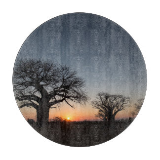 Sacred Baobabs Boards