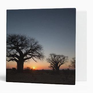Sacred Baobabs Vinyl Binders