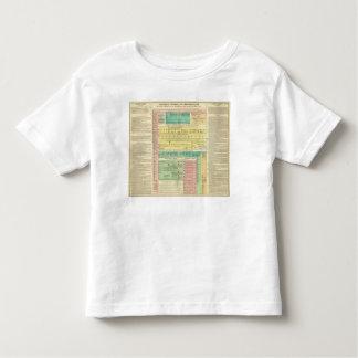 Sacred Biblical History Toddler T-shirt
