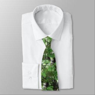 Sacred Cedar Mens Necktie