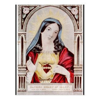 Sacred Heart of Mary Postcard