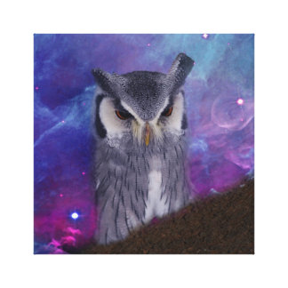 Sacred owl and fantasy sky canvas print