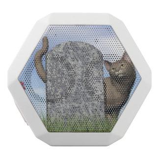 Sad cat near tombstone white bluetooth speaker