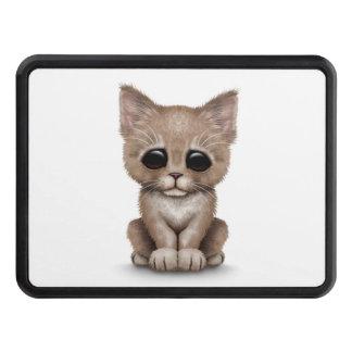 Sad Cute Beige Kitten Cat on White Trailer Hitch Covers