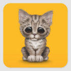 Sad Cute Brown Tabby Kitten Cat on Yellow Square Sticker