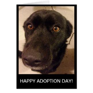 Sad Dog Happy Adoption Day Card
