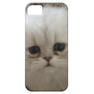 Sad eyes white fluffy kitten looking up iPhone 5 cover
