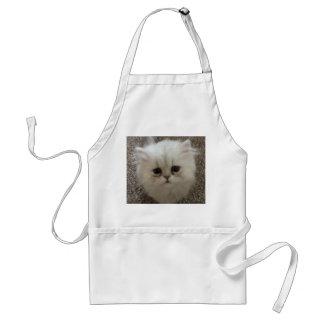Sad eyes white fluffy kitten looking up standard apron