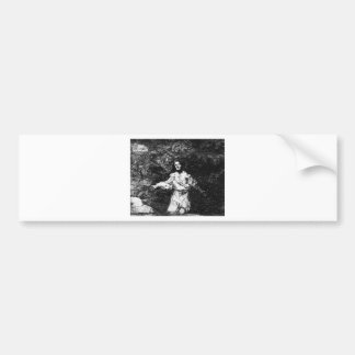 Sad forebodings of what is to come Francisco Goya Bumper Sticker
