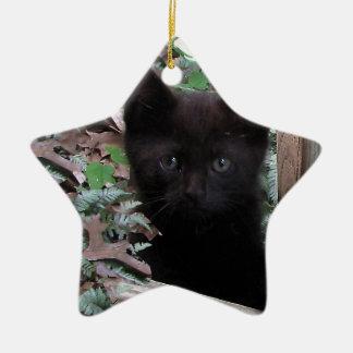 Sad Kitten Garden Ceramic Star Ornament