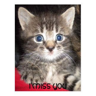 Sad Kitten - I MISS YOU Postcard