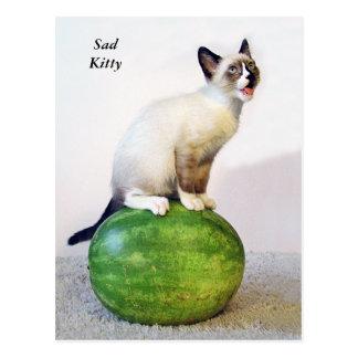 Sad Kitty on Watermelon Post Card Cat