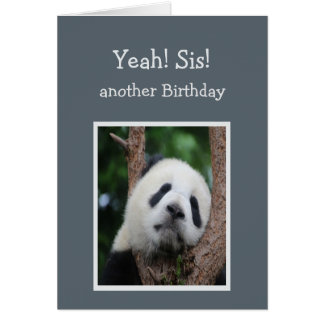 Sad Panda Bear Happy Birthday Sister Humor Card