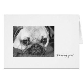 Sad Pug Card