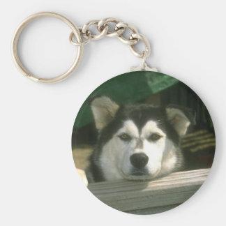 Sad Puppy Keychain