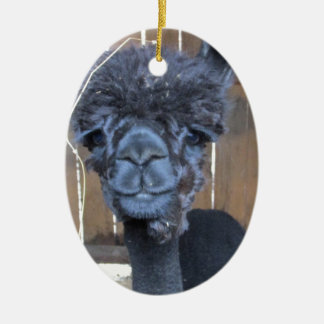 Sad Shaved Alpaca Ceramic Oval Ornament