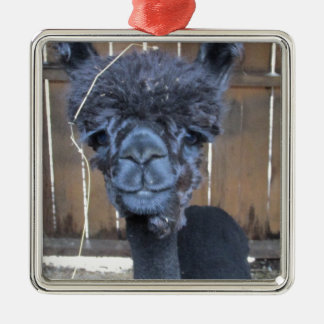 Sad Shaved Alpaca Silver-Colored Square Ornament
