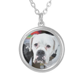 Sad White Boxer Silver Plated Necklace
